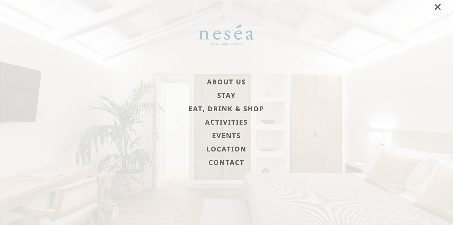Nesea custom webdesign screen 2